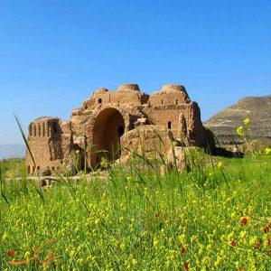 دفن مرده در کاخ اردشیر بابکان