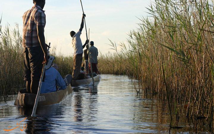 موکورو سواری در میان اوکاوانجو