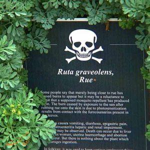 باغ آلنویک - تابلوی خطر