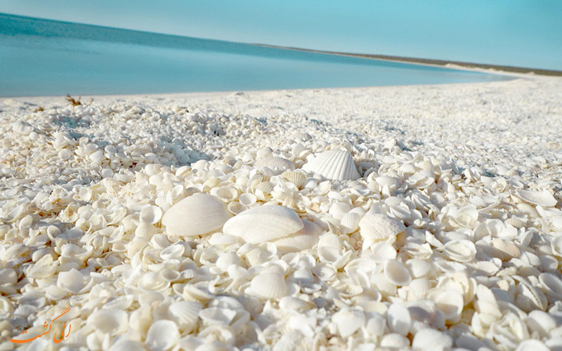 ساحل زیبای استرالیا