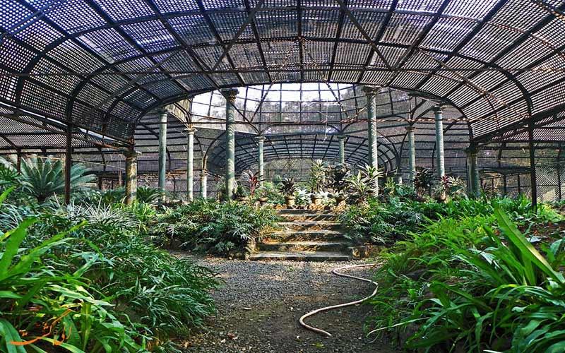 باغ ویکتوریا