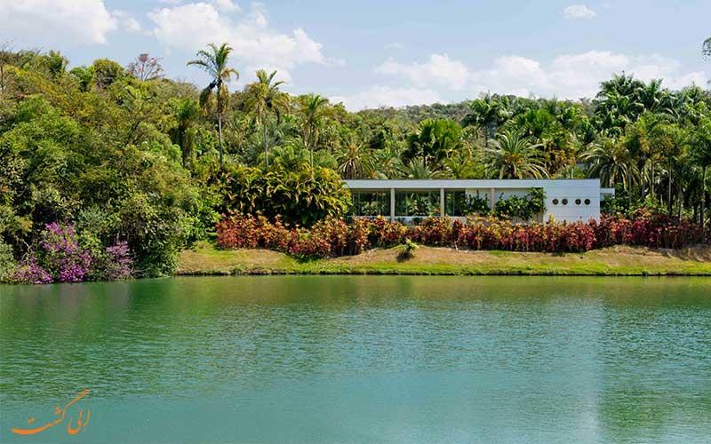 باغ اینوتیم، برومادینو