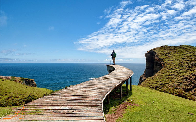 جزیره شیلوئه