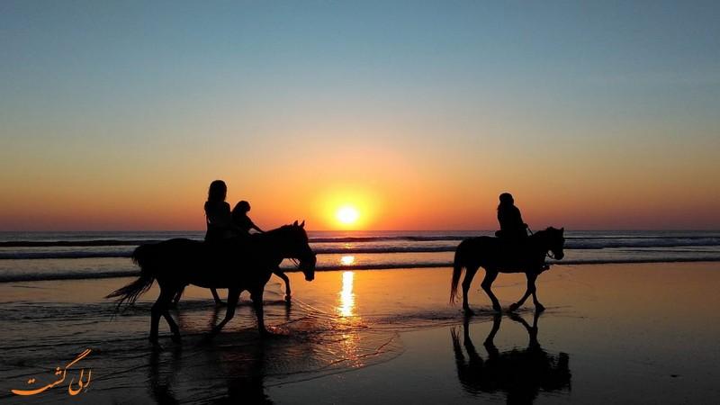 اسب سواری در مراکش
