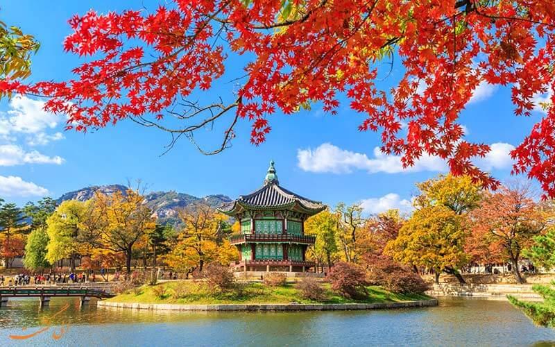 جاذبه ای در کره جنوبی