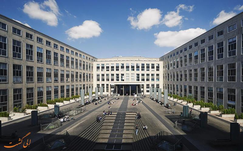 دانشگاه دافین
