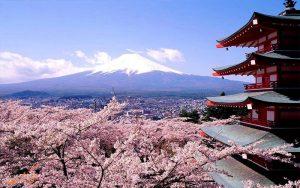 جاذبه های اوزاکا در ژاپن