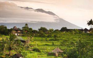 طبیعت گردی در جزیره بالی