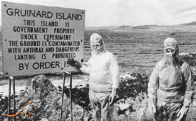 سیاه زخم در جزیره گروینارد اسکاتلند