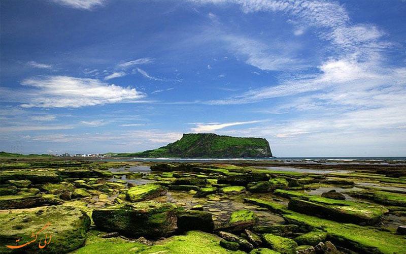 پای کوه آتشفشانی جزیره ججو