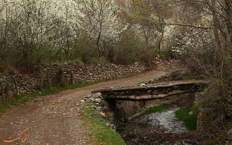 روستای خرو