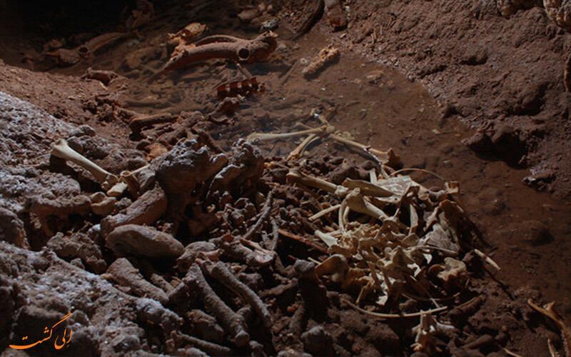 اسکلت های باقی مانده در غار جهنم
