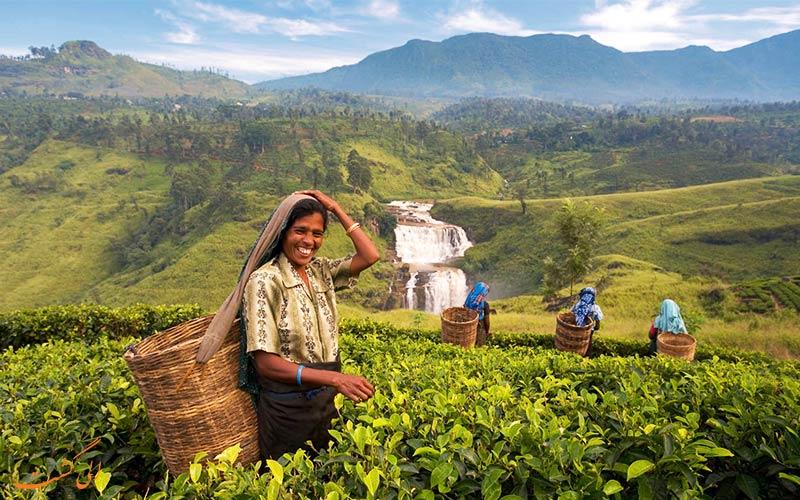 برنامه سفر به سریلانکا