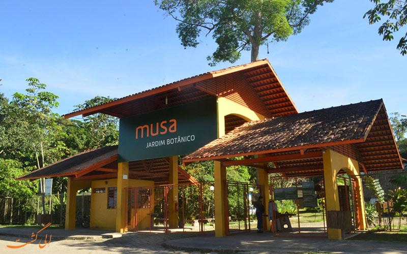 باغ موزه آمازون