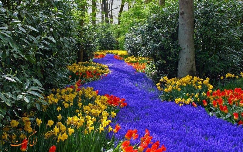 باغ گل کوکنهوف