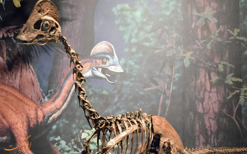 شبیه سازی دایناسورها