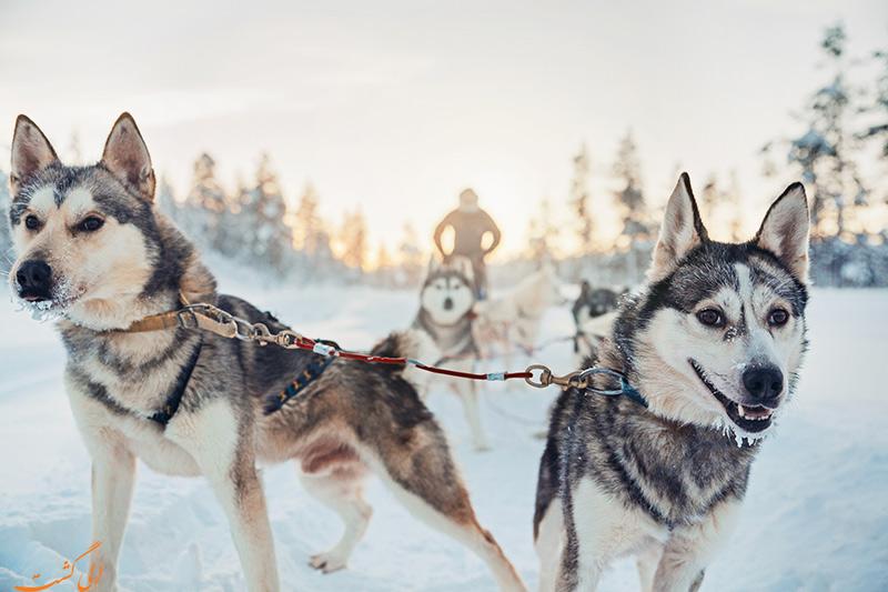 سورتمه سواری در نروژ