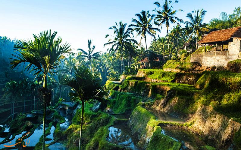 جاذبه های کشور اندونزی