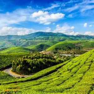 طبیعت زیبای هند
