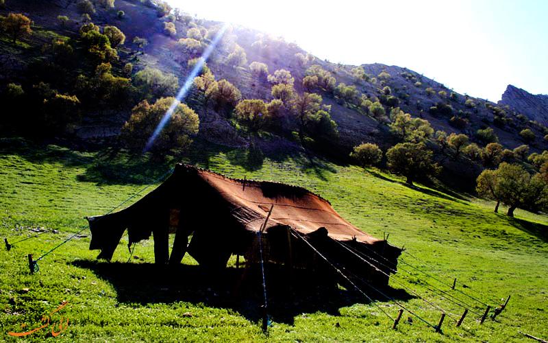 عشایر در دره عشق
