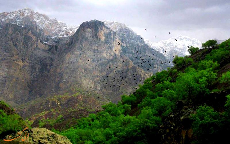 دره عشق ایران