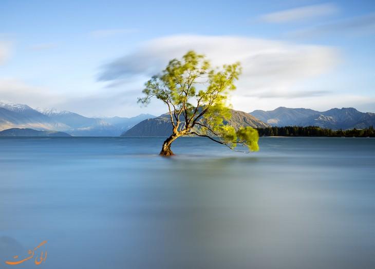 مسیرهای طبیعت گردی در نیوزیلند