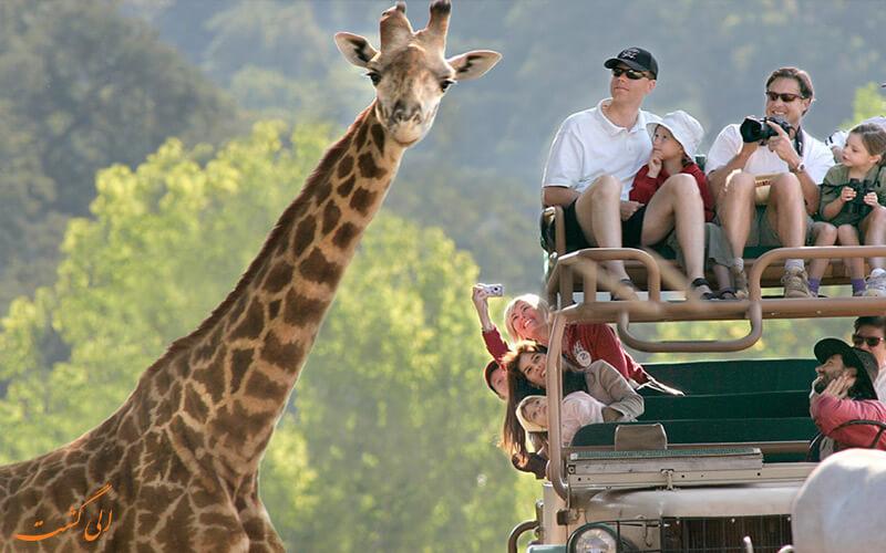 جاذبه های طبیعی آفریقای جنوبی