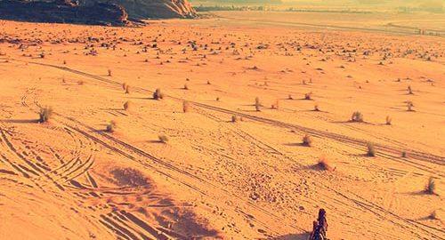 شهر الجزیره، شهری گذرگاهی - ویدئو
