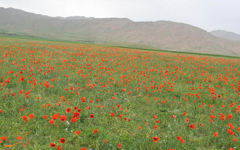 هزاوه جاذبه های گردشگری استان مرکزی