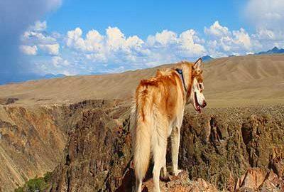 5 دره معروف قزاقستان