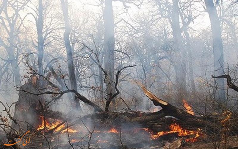 مهار آتش در جنگل های گیلان