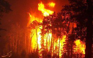 آتش سوزی در جنگل های گیلان