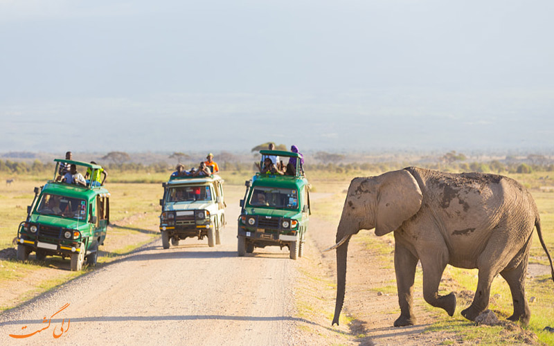 پارک های ملی تانزانیا
