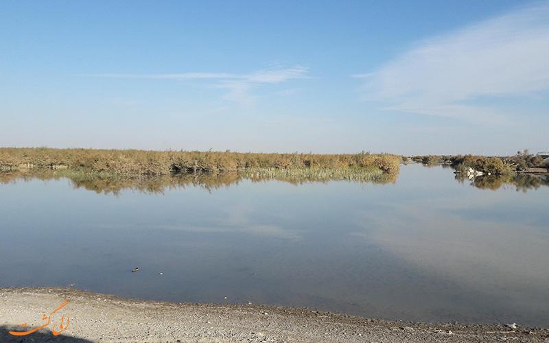 دریاچه هامون، زندگی بخش استان سیستان و بلوچستان
