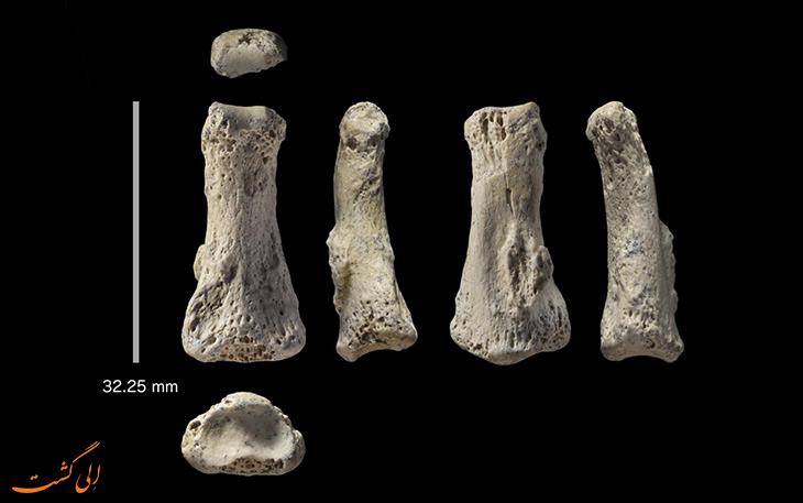 کشف یک استخوان 88 هزار ساله