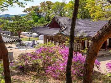 کاخ چانگ دیوک گونگ در سئول