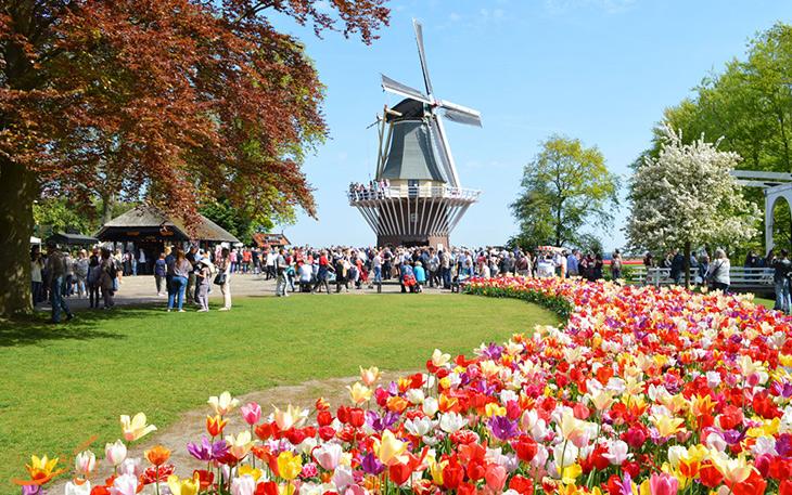 جشنواره گل کوکنهوف در هلند