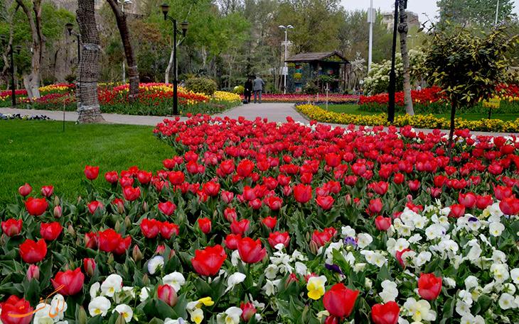 جشنواره گل در کرج