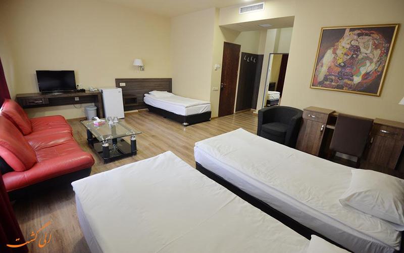 هتل ایروان دلوکس | اتاق