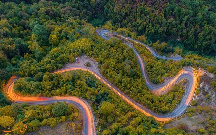 جنگل توسکستانی در گرگان