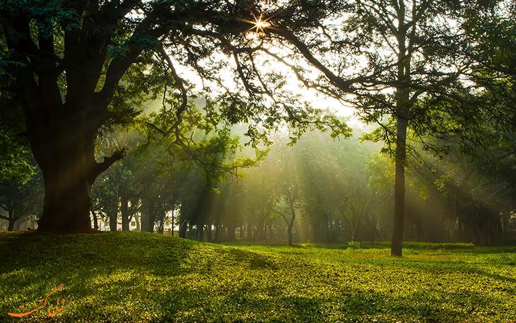 باغ کوبون در بنگلور