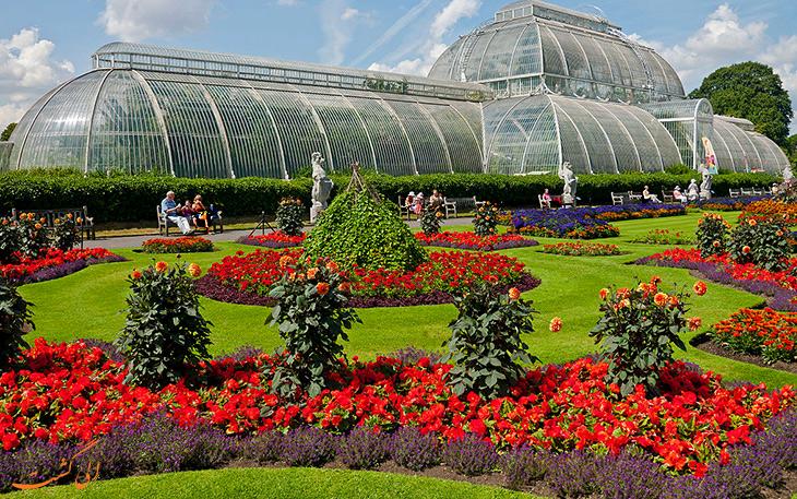 باغ گیاه شناسی کیو در لندن