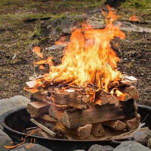 آتش درست کردن در طبیعت-الی گشت