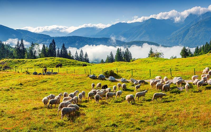 پارک ملی تریگلاو در اسلوونی