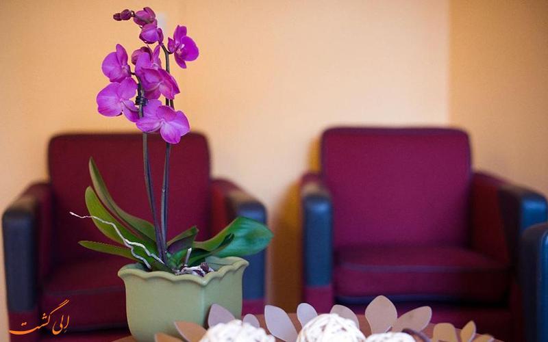 خدمات رفاهی هتل دیالوگ استکهلم