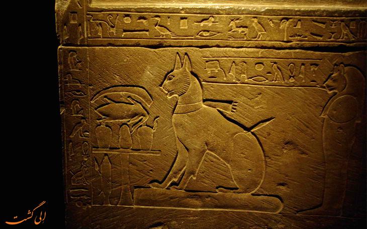 گربه در مصر باستان