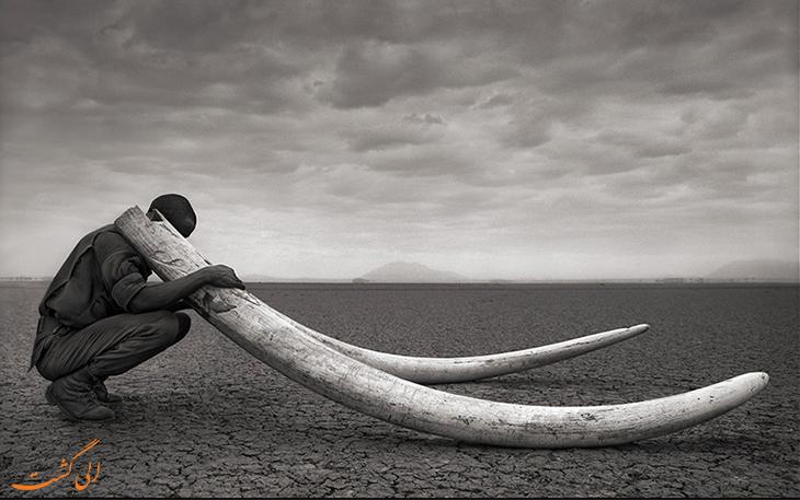 دریاچه مرگ