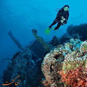 بهترین دریاها برای غواصی-الی گشت