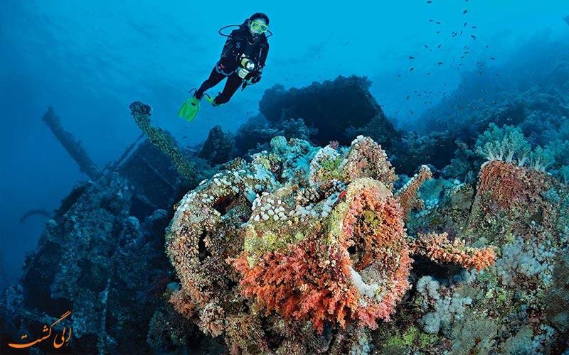 دریای سرخ، مصر-بهترین مکان ها برای غواصی