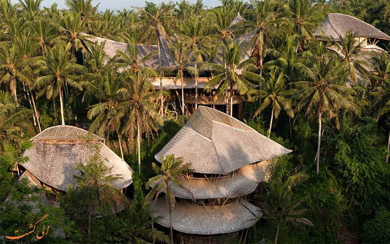 فایرفلای اکو لاج-بالی